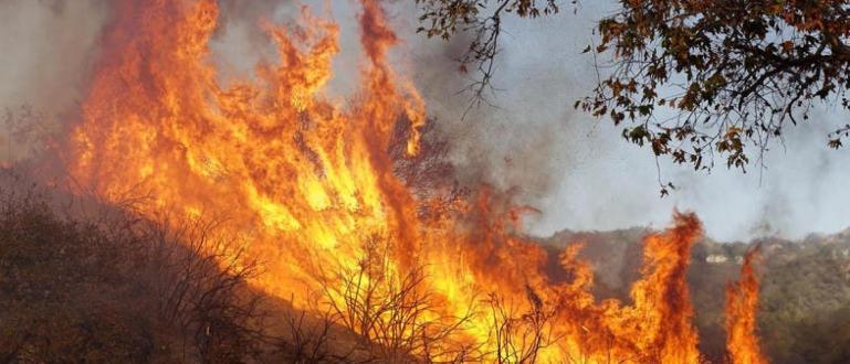 Пожарът над санданското село Петрово продължава да бушува. Пожарникарите цяла