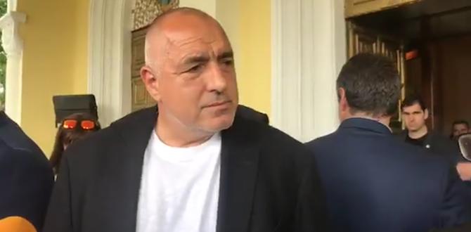 Посрещането подготвяно съвместно с президентството, каза БорисовПосещението на папа Франциск