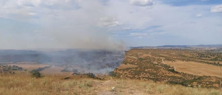 Вече е изгасен големият пожар на територията на общините Тополовград