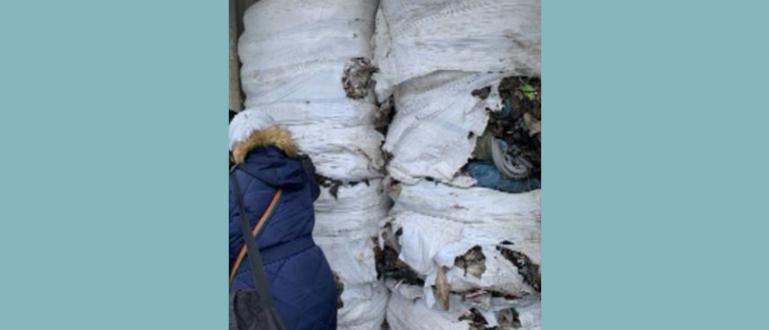Италиански боклук беше хванат и на пристанището в Бургас, изпратен