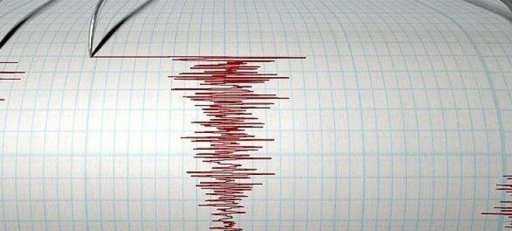 еметресение с магнитуд 5,6 в Западна Турция, показва справка на