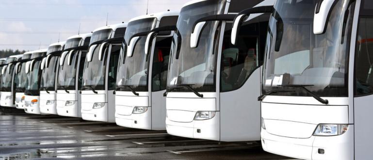 От днес пада карантината за международните превози и автобусните превозвачи.