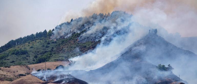 Хиляди на остров Гран Канария бяха евакуирани заради горски пожар.
