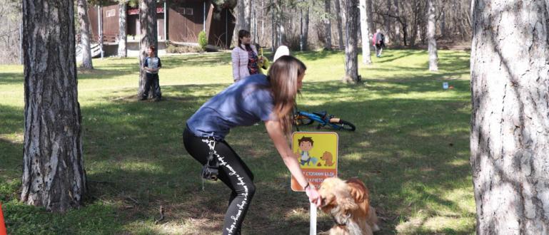"""Инициативата """"Добър стопанин бъди, след кучето си почисти"""" стартира днес"""