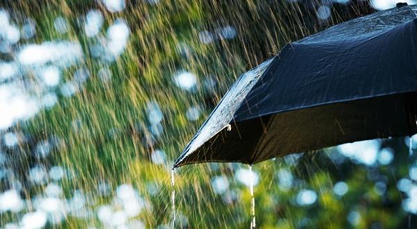 Щетите върху реколтата и градините са значителниЛятна буря с обилен