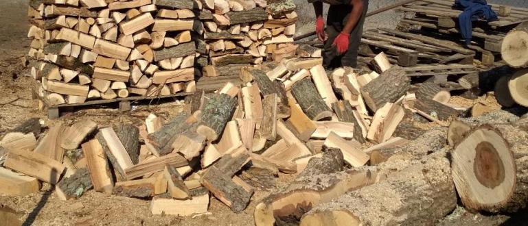 Рекордни цени на дървата и пелетите за огрев на прага