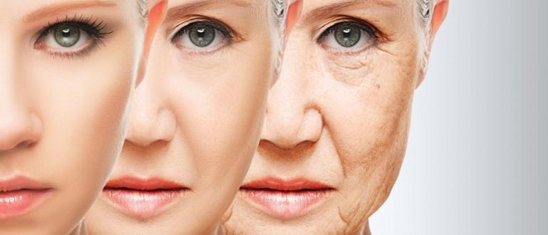 Хората остаряват биологично на три етапа, като основните преходи са