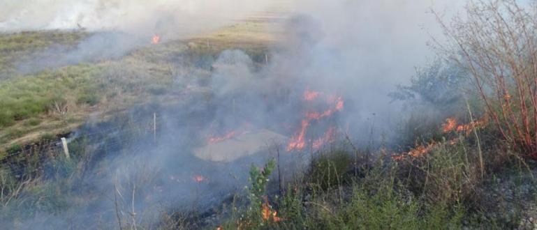 Овладян е големият пожаркрайХарманли. Огънят пламна в неделя вечерта и