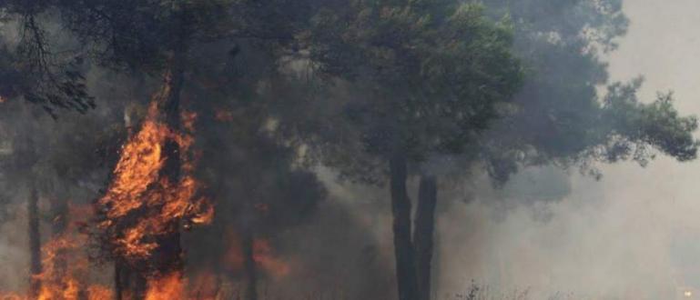 Гърция продължава да навлиза в лапите на огнения ад, след