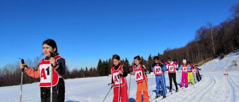 Най-социално насоченият проект на Българската федерация по ски, Министерството на