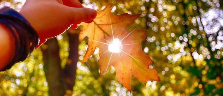 Днес ще се задържи предимно слънчево и топло за сезона.