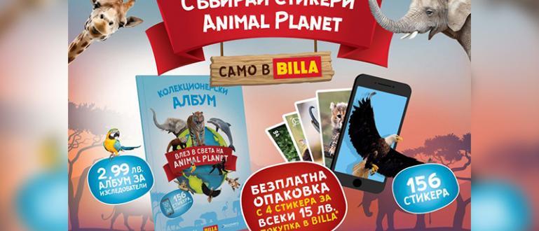 BILLA България стартира образователна кампания за деца – Animal Planet.