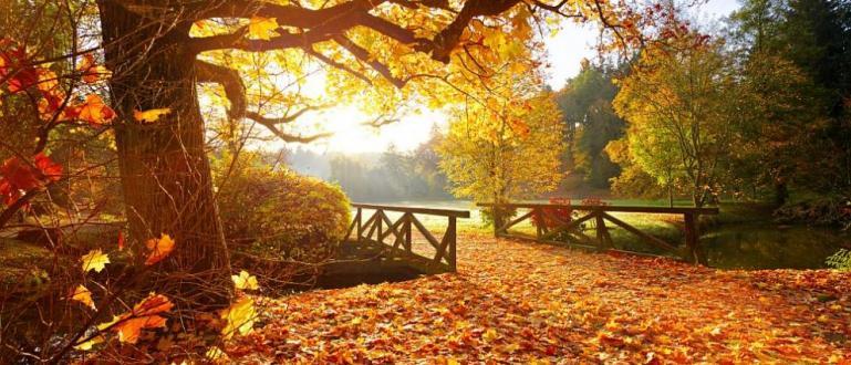Времето вече е типично есенно – сутрините са хладни, през