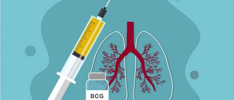 Учени от САЩ обявиха, че имунизацията срещу туберкулоза може да