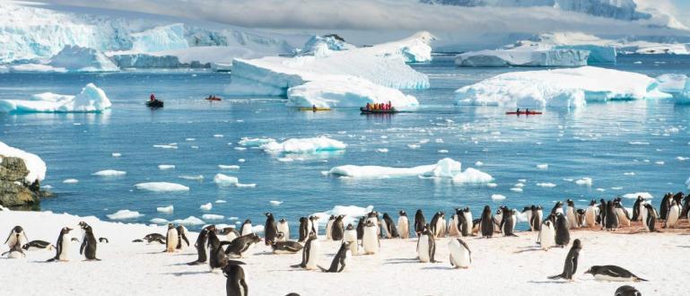В Антарктида е била регистрирана най-високата температура, откакто се правят