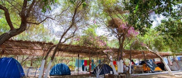 Туристи от България и Румъния масово резервират почивка на къмпинг