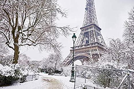 Обилен снеговалеж прекъсна електроподаването за близо 5000 домакинства от региона