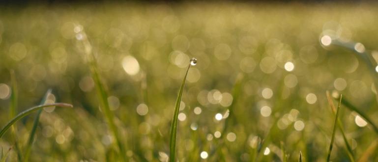 Днес ще бъде слънчево до обед, следобед ще вали и