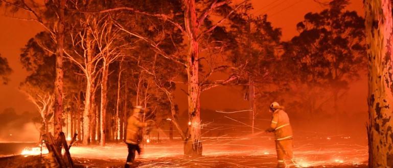 Горските пожари, които бушуват в Австралия, генерират толкова много горещина,