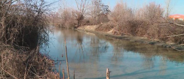 Преустановено е замърсяването на река Марица, което предизвика масова смърт