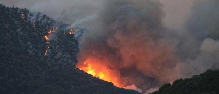 20 нови пожара горяха заради силния вятър днес. Огнищата вече