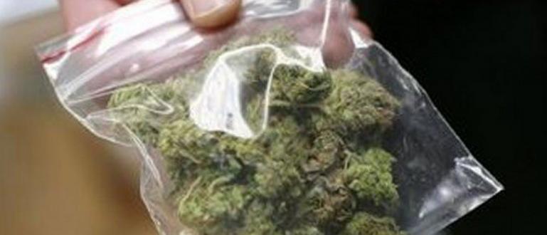 Вместо марихуана, софиянец си купи суха трева за 2 бона.