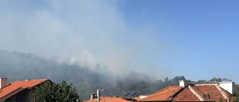 Пожарът край Дупница вече е потушен, предаде БНР. Не е