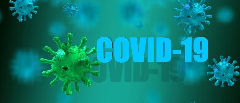 Създаден ли е коронавирусът Ковид-10 в лаборатория с цел да