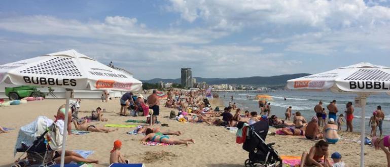 Германският туристически концерн TUI регистрира търсене на малки групови турове