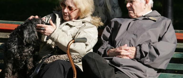 Повече от 2 млн. пенсионери ще получат допълнителни 50 лв.