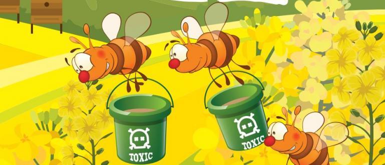 Масивни количества пчелен мед ще бъдат внесени в Европейския съюз