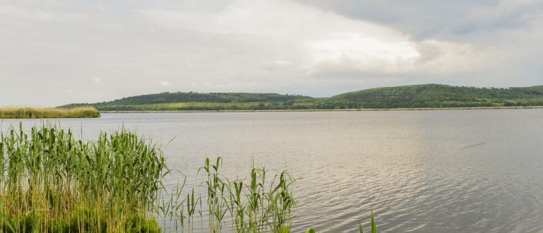 Нивото на река Дунав продължава да се покачва. В четвъртък