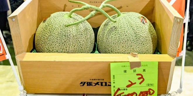 Първокачествени японски пъпеши бяха продадени днес на търг срещу скромна