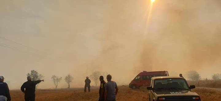 Ситуацията с пожарите в Хасковска област е критична. Пламъците, тръгнали