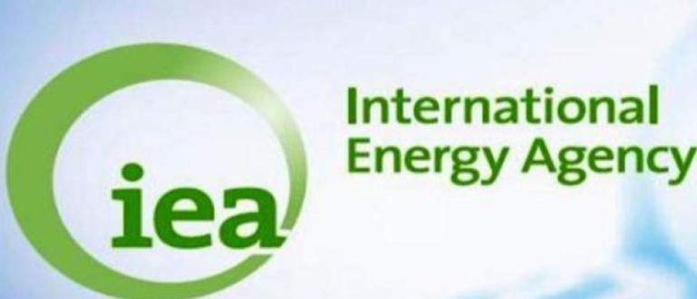 Организацията на страните износителки на петрол (ОПЕК) и нейните съюзници,