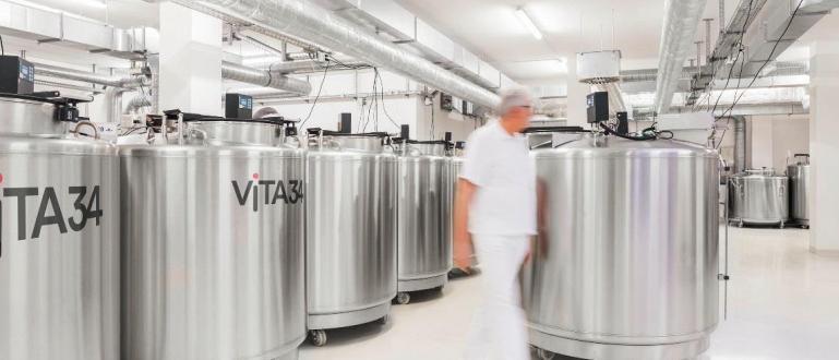 Немският гигант за съхранение на стволови клетки стъпи у насС
