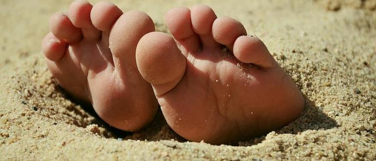 Пясъкът по плажовете край реките и езерата е благоприятна среда
