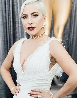 Лейди Гага заяви, че ще финансира 162 училищни проекта. Певицата