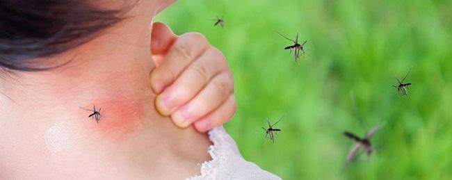 Снимка: 2-годишно дете от Бургас със западнонилска треска