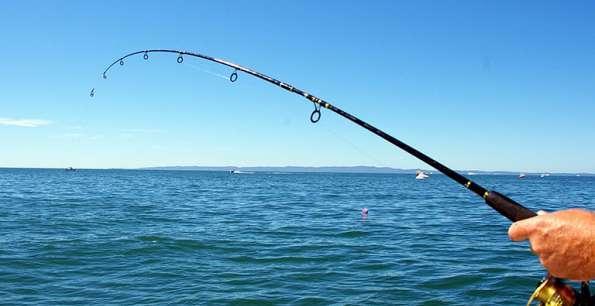 Земеделското министерство обсъжда идеята да се въведе риболовен билет за