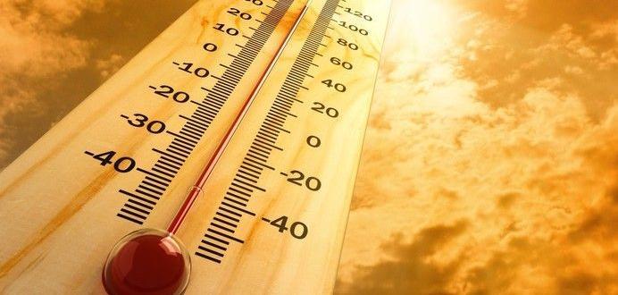 Най-малко 23 са жертвите на жегите в Япония, а близо