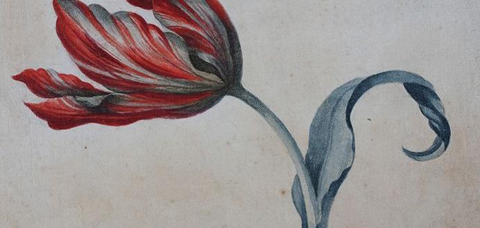 """Изложбата """"Цветя за медиците"""" се открива днес в Националната галерия,"""