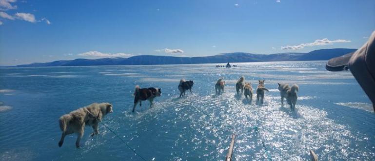 Освен в международните отношения, Гренландия предизвиква тревоги и в научните