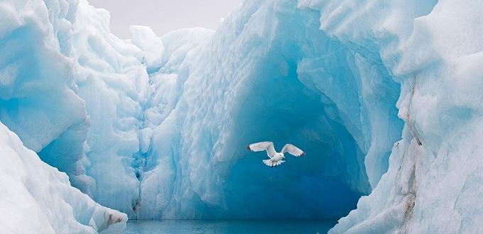 Британски климатолози предупредиха, че почти цялата полярна ледена шапка може